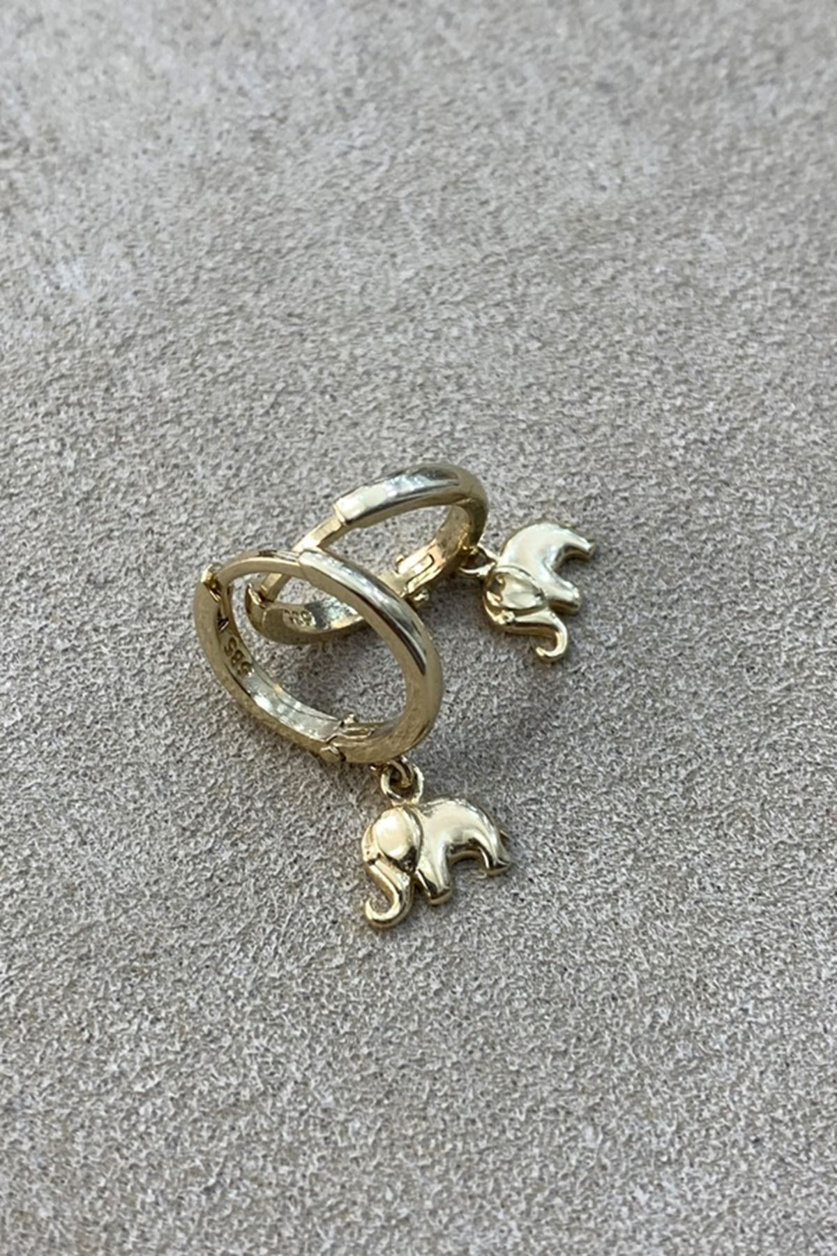 Fil Altın Küpe Y00860